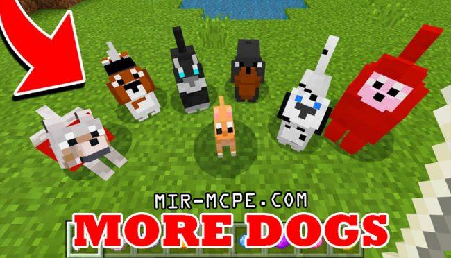 More Dogs - мод на собак 1.16, 1.15, 1.14, 1.13