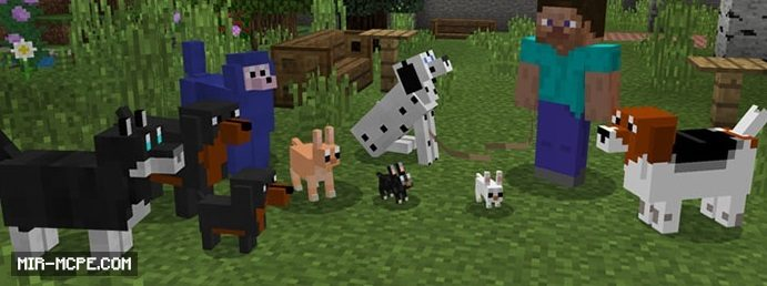 More Dogs addon